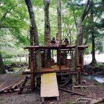 森のツリーハウス